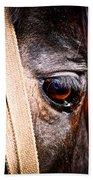 Horse Tears Bath Towel