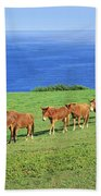 Horses Bath Towel
