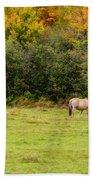 Horses Enjoying A Beautiful Autumn Day Bath Towel