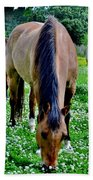 Horses In The Meadow Bath Towel