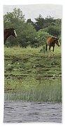 Horses On Ireland's River Shannon Bath Towel
