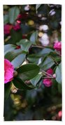 Hot Pink Camellias Glowing In The Shade Bath Towel