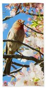 House Finch In The Cherry Blossoms Bath Towel