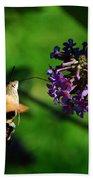 Hummingbird Hawk Moth 2 Bath Towel