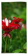 Hummingbird In Flowers Bath Towel