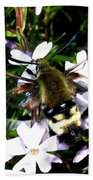 Hummingbird Moth Bath Towel