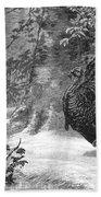 Hunting: Wild Turkey, 1886 Bath Towel