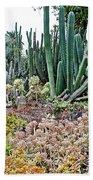 Huntington Desert Garden In San Marino-california Bath Towel
