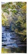 Huyck Preserve Falls Bath Towel
