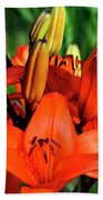 Hybrid Lilies Hand Towel