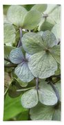 Hydrangea  In Purple And Pale Yellow Bath Towel