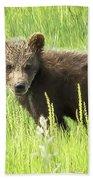 I Love Me A Teddy Bear Bath Towel by Belinda Greb