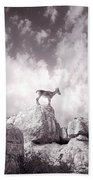 Ibex -the Wild Mountain Goats In The El Torcal Mountains Spain Bath Towel