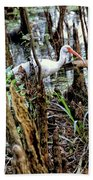 Ibis In The Swamp Bath Towel