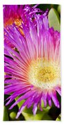 Ice Plant Blossom Bath Towel
