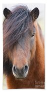 Iclelandic Horse Close Up Bath Towel