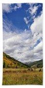 Iconic Colorado Hand Towel