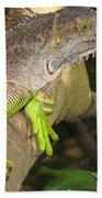 Iguana - A Special Garden Guest Hand Towel