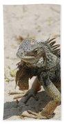 Iguana Sitting On A Sandy Beach In Aruba Bath Towel