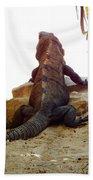 Iguana Watchout Bath Towel