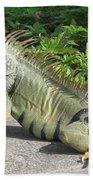 Iguania Sunbathing Hand Towel
