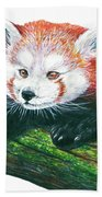 Illlustration Of Red Panda On Branch Drawn With Faber Castell Pi Bath Towel