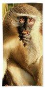Illuminated Vervet Monkey  Bath Towel
