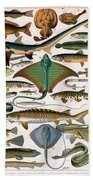 Illustration Of Ocean Fish Bath Towel