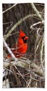 Img_0806 - Northern Cardinal Bath Towel