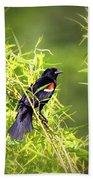 Img_0841-003 - Red-winged Blackbird Bath Towel