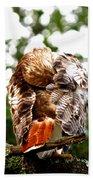 Img_1049-006 - Red-tailed Hawk Bath Towel