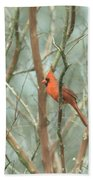Img_1273-003 - Northern Cardinal Bath Towel
