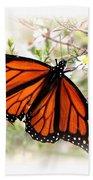 Img_5290-004 - Butterfly Bath Towel