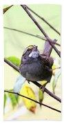 Img_7541-002 - White-throated Sparrow Bath Towel