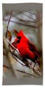 Img_9241 - Northern Cardinal Bath Towel