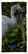 Immature Wood Stork Bath Towel