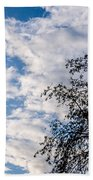 In That Quiet Earth - At Sunset Bath Towel
