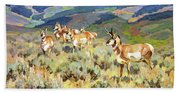 In The Foothills - Antelope Hand Towel