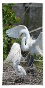 In The Wild White Snowy Egrets Photography ....photo A Bath Towel