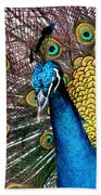 Indian Blue Peacock Bath Towel