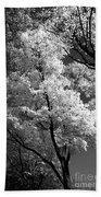 Infrared Tree Pic Bath Towel