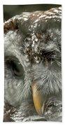 Injured Owl Bath Towel