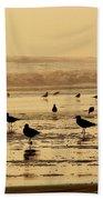 Iquique Chile Seagulls  Bath Towel