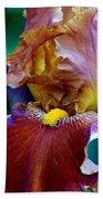 Iris Beauty Photograph Bath Towel