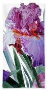Watercolor Of A Tall Bearded Iris In Pink, Lilac And Red I Call Iris Pavarotti Bath Towel