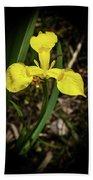 Iris Of The Marshes - 1 Bath Towel
