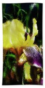 Iris Purple And Yellow Bath Towel