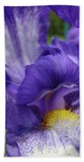 Irises Artwork Purple Iris Flowers Art Prints Canvas Baslee Troutman Bath Towel