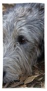 Irish Wolfhound Ivan Bath Towel
