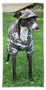 Italian Greyhound Army Bath Towel